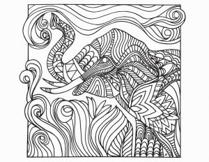 Haida Art Coloring Pages - Beautiful 1569 Best Coloring Pages Animal S 2c