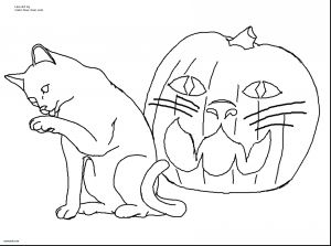 Halloween Costumes Coloring Pages - Kids Coloring Pages for Girls Halloween Cats In Costumes Lovely Cat Printable Coloring Pages Inspirational Best 11t