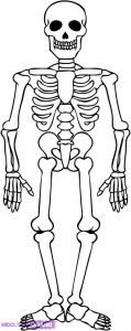 Halloween Skeleton Coloring Pages - Skeleton Coloring Page with Pages Volamtuoitho 19l