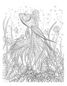 Humming Belles Coloring Pages - Oceana Adult Coloring Book Twenty Creative and Stress Relieving Coloring Pages for Adults Inspired From the Amazing Underwater World Of the Oceans and the 7g