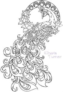 Humming Belles Coloring Pages - Hard Coloring Sheet Realistic Peacock Coloring Pages Free Coloring Page Printable 16b