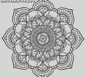 Intricate Mandala Coloring Pages - Mandala Coloring Pages for Kids Fresh Awesome Intricate Mandala Coloring Pages to Download 1000 900 Fun 2d