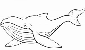 Jonah and the Whale Coloring Pages for Preschoolers - Printable Coloring Pages Jonah and the Whale 7m