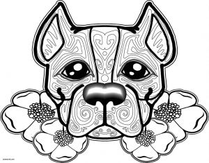 Kittens Coloring Pages - Kitty Cat Coloring Page Awesome Fresh Kitty Cat Coloring Pages Unique Best Od Dog Coloring Pages 19o
