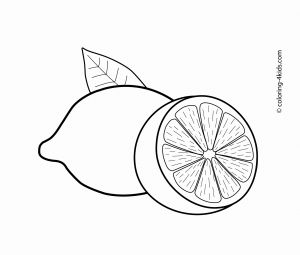 "Lemonade Stand Coloring Pages - Lemons Fruits Coloring Pages for Kids Printable Free Lam ""™"" Lemon Coloring Pages for Kids 18k"