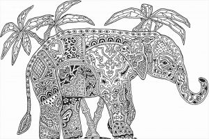 Mandala Animal Coloring Pages - Awesome Coloring Pages Mandala New Mandala Animal Coloring Pages 11f