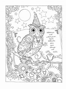 Mandalas Coloring Pages - Owl Mandala Coloring Pages Inspirational Unique Cute Owls to Color 8n