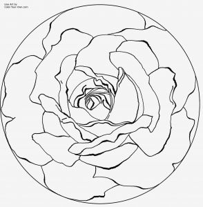 Mandalas Coloring Pages - Easy Adult Coloring Pages Free Printable Mandala Coloring Pages 4f