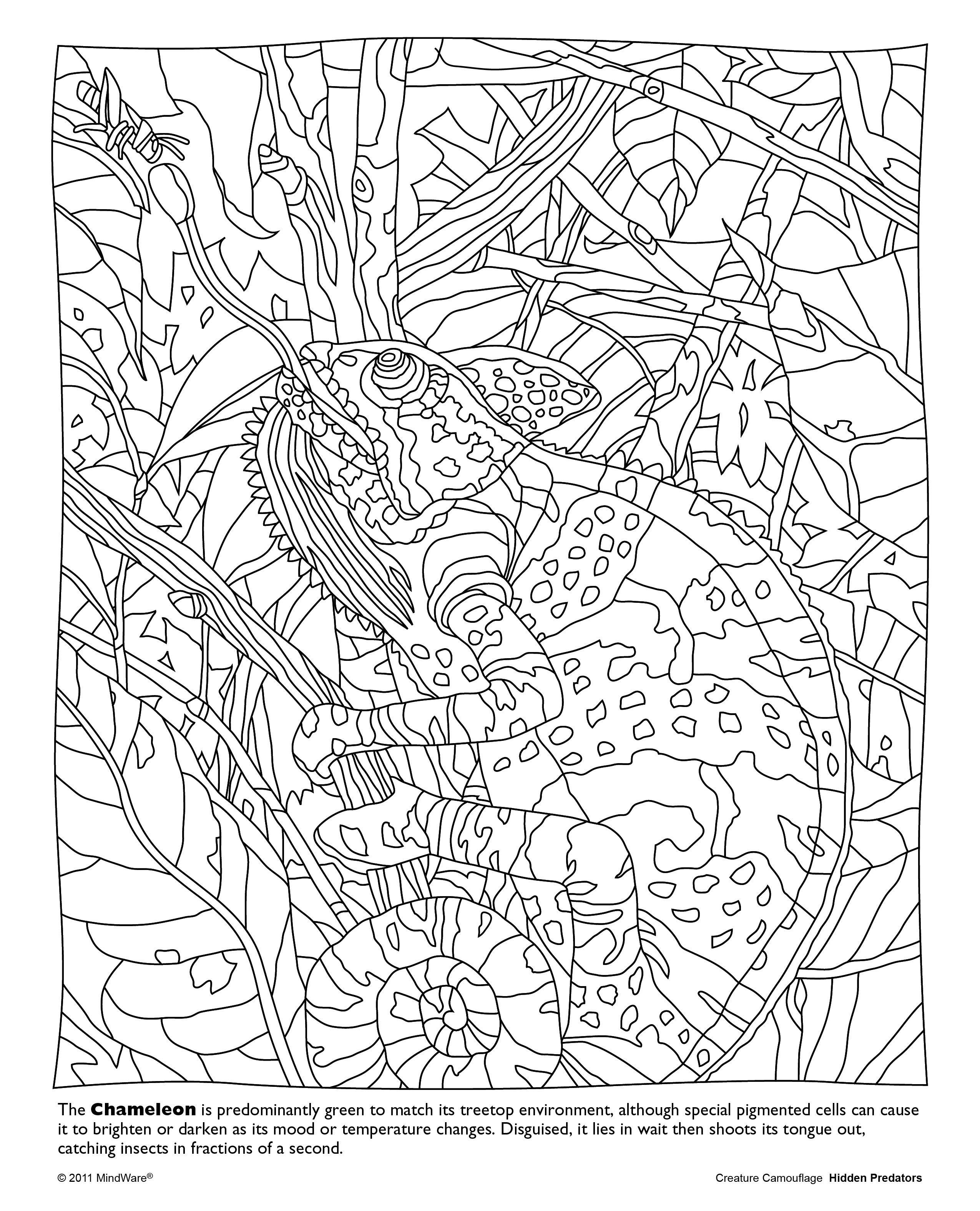 mindware coloring pages free Collection-Life is about using the whole box of crayons Go WILD with this free printable from our Hidden Predators Coloring Book 16-r