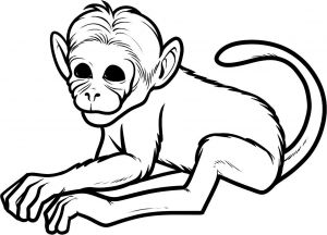 Monkey Coloring Pages for Preschoolers - Free Monkey Coloring Pages for Kids 4f