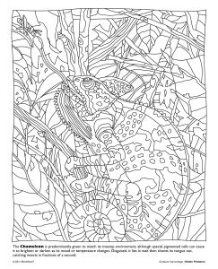 Mystery Of History Coloring Pages - Life is About Using the whole Box Of Crayons Go Wild with This Free Printable From Our Hidden Predators Coloring Book 5r