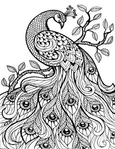 Nature Mandala Coloring Pages - Free Printable Coloring Pages for Adults Ly Image 36 Art Davlin Publishing Adultcoloring 19h
