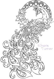 Pen Coloring Pages - Realistic Peacock Coloring Pages Free Coloring Page Printable 15s