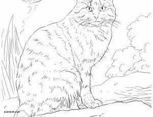 Prinatable Coloring Pages - Print F Coloring Pages Awesome Printable Coloring Book for Kids Luxury Fitnesscoloring Pages 0d 14s
