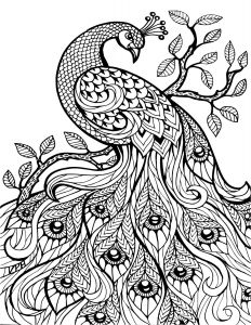 Print Coloring Pages - Print Coloring Pages Luxury S S Media Cache Ak0 Pinimg originals 0d 6h
