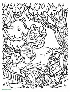 Print Coloring Pages - Coloring Pages Dolphin 4c
