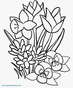 Printable Coloring Pages Of Flowers and butterflies - butterfly Coloring Pages Awesome Coloring Pages Flowers and butterflies Luxury Cool Vases Flower 11 Inspirational 8j