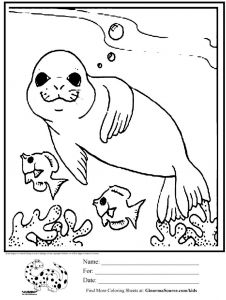 Realistic Fox Coloring Pages - Coloring Pages Animals Realistic Unique Animal Coloring Pages for Kids Fresh Best Od Dog Coloring Pages Free Of Coloring Pages Animals Realistic 771x1024 11m