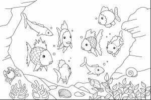 Saltwater Fish Coloring Pages - Fish Aquarium Coloring Pages 4o