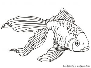 Saltwater Fish Coloring Pages - Tropical Fish Coloring Pages 18b