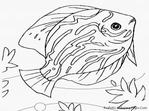 Saltwater Fish Coloring Pages - Bass Fish Coloring Pages 20 Best Saltwater Fish Coloring Pages 15o