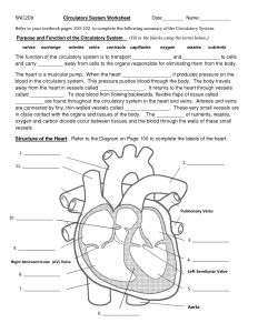 Science Coloring Pages for Middle School - Circulatory System Diagram Worksheet 3c