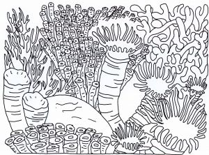 Sea Animal Coloring Pages Printable Free - Sea World Coloring Pages 3j