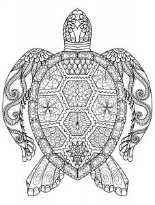 Sea Animal Coloring Pages Printable Free - 20 Gorgeous Free Printable Adult Coloring Pages More 2p