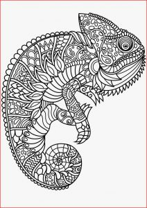Sea Animal Coloring Pages Printable Free - Animal Mandala Coloring Pages Animal Mandala Coloring Pages for Adults Fresh Best Od Dog Coloring 9d