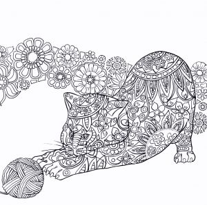 Showing Kindness Coloring Pages - Coloring Sheets Colors Sheets Feather Coloring Pages Inspirational Color Sheet 0d 19q
