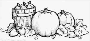Summer Preschool Coloring Pages - Fall Coloring Pages for Kids 4o