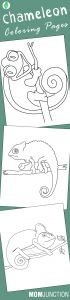 Tanzania Coloring Pages - 10 Best Chameleon Coloring Pages for Your toddler 18m